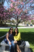 Hannah and Elaine underneath a cherry blossom tree.