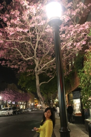 Elaine with the pretty cherry blossom and lamp post.