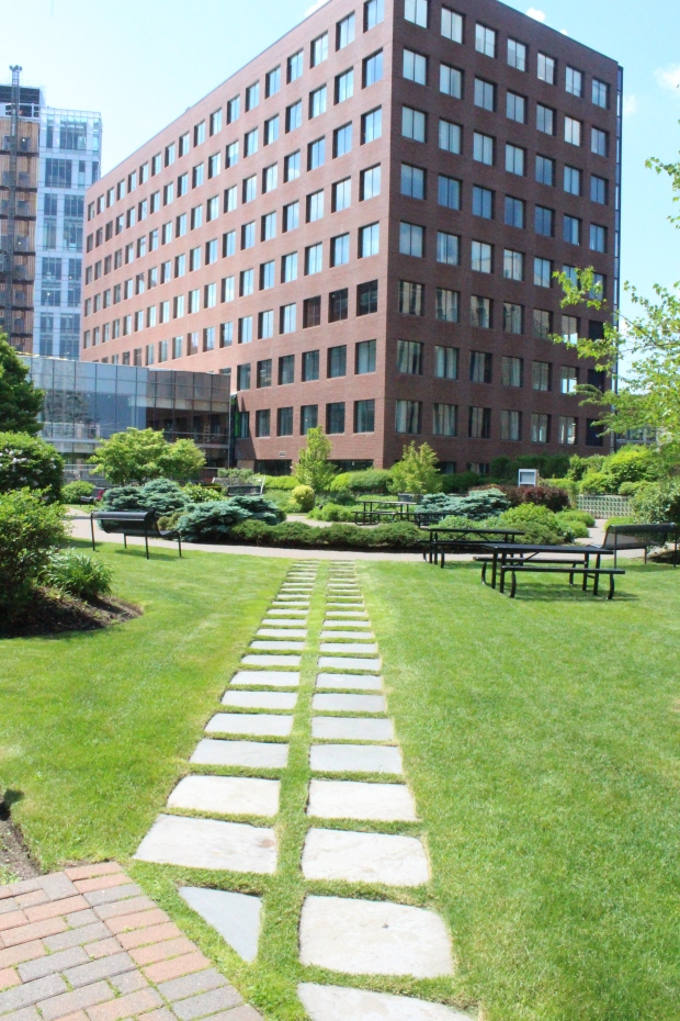MIT's Rooftop Garden.