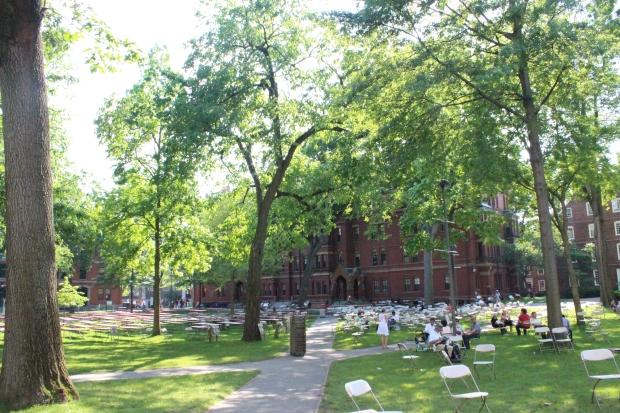 Harvard Undergraduate Post-Ceremony