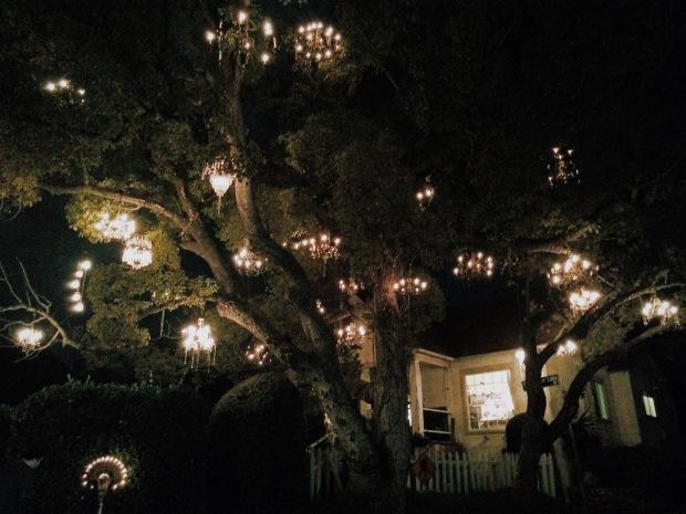 The Chandelier Tree Tina Talks Today